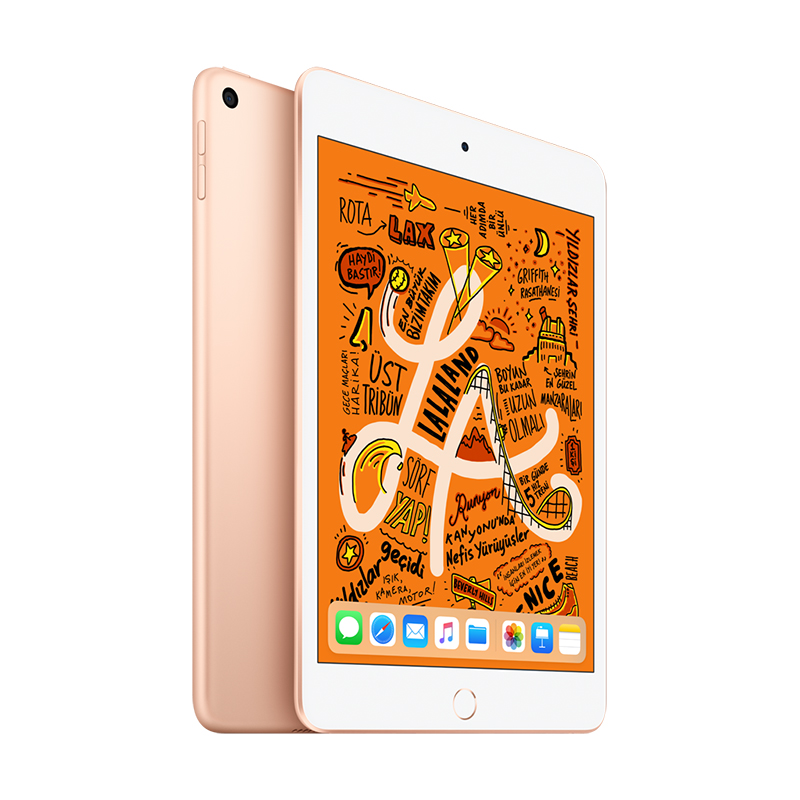 7.9 inç iPad mini Wi-Fi 256GB - Gold