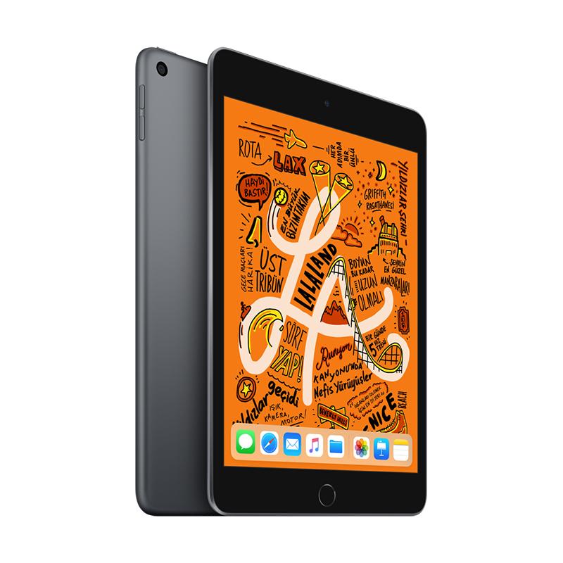 7.9 inç iPad mini Wi-Fi 256GB - Space Grey